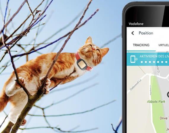 V wie Vodafone ist das neue IoT-Angebot vom Mobilfunkanbieter