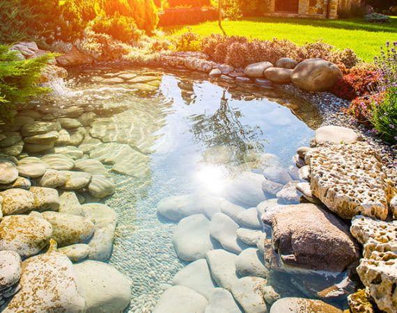 Saubere Teiche erfreuen Besitzer und Bewohner. Wir zeigen die besten Teichsauger im Test-Vergleich