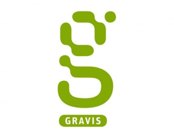 GRAVIS Black Summer Sale
