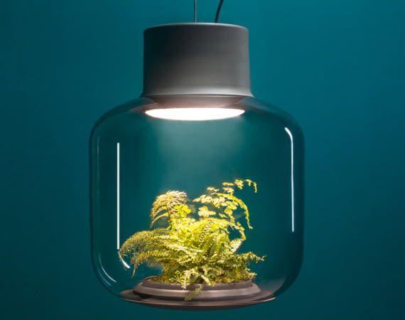 Das Mygdal Plantlight basiert auf einem autarken Ökosystem