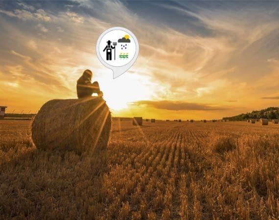 Dieser Alexa Skill bringt Bauernregeln ins moderne Leben