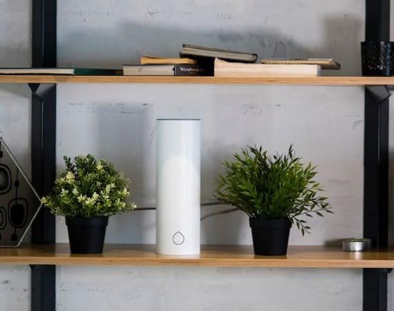 Grovio bewässert Zimmerpflanzen zuverlässig und vollautomatisch