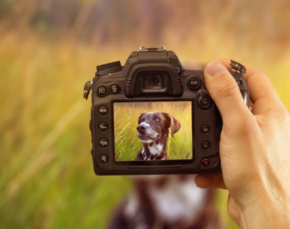 Eine gute Digitalkamera erzeugt auch bei schnellen Bewegungen hochwertige Bilder