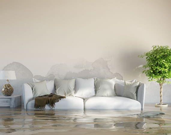 Waterminator verhindert Wasserschäden, bevor sie entstehen