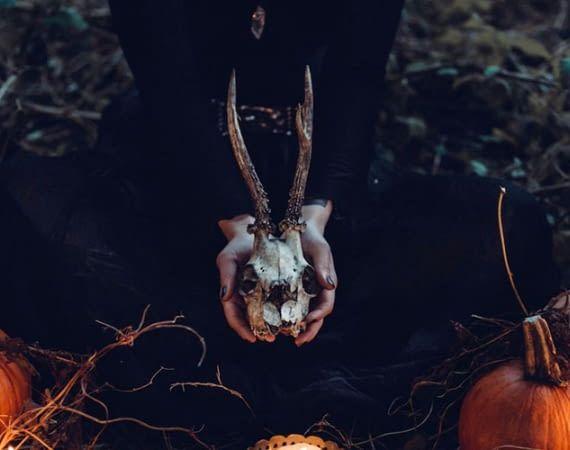 Philips Hue sorgt für gruseliges Licht zu Halloween