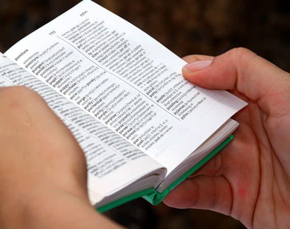 Mit Alexa brauchen wir nie wieder schwere Wörterbücher schleppen