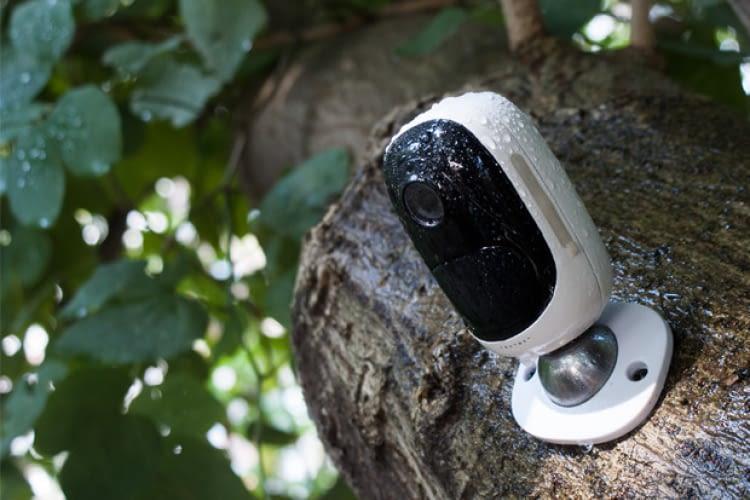 Wacht mit Argusaugen über Innen- und Außenbereiche: Die kabellose Überwachunskamera von Reolink