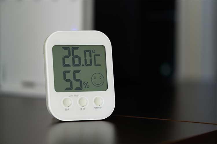Die besten Thermometer