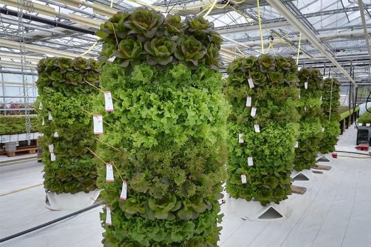 Urban Gardening in 3D ermöglichen diese vertikalen Pflanztonnen