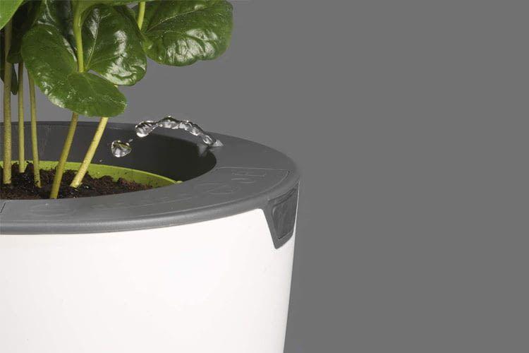 Der LAZY LEAF Blumentopf gießt Blumen automatisch mit der eingestellten Wassermenge