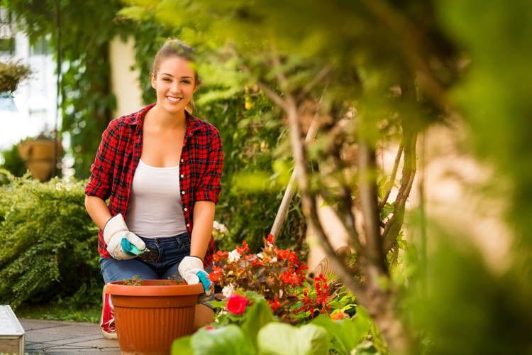 Smart Garten: Intelligent wässern, mähen und Pflanzen pflegen