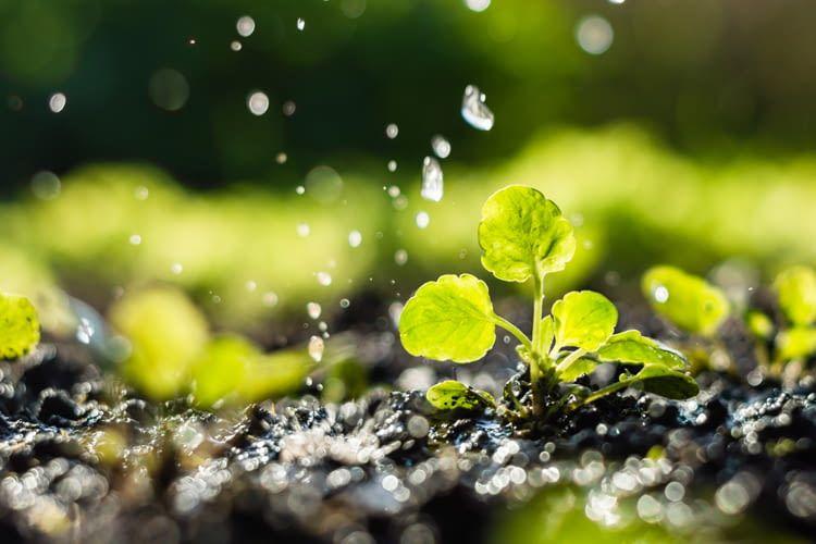 Fabelhaft Automatische Garten-Bewässerung im Test-Überblick 2019 und Vergleich @XH_58