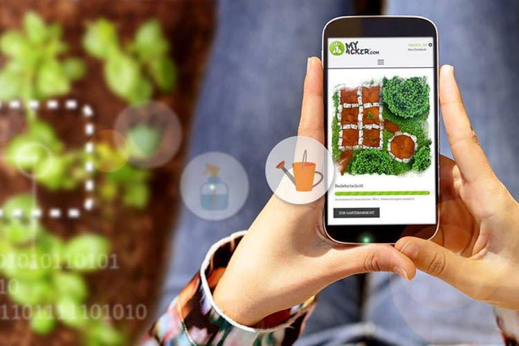 MyAcker vermittelt viel Wissenswertes rund um Gemüseanbau und Pflanzenpflege