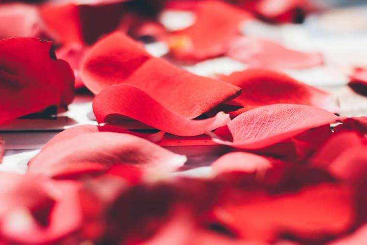 Philips Hue Labs hat für den Valentinstag spezielle Lichtrezepte entwickelt