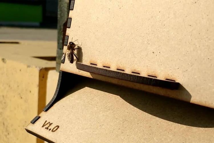 Dieser unscheinbare Kasten am Eingang zum Bienenstock enthält eine Kamera mit KI