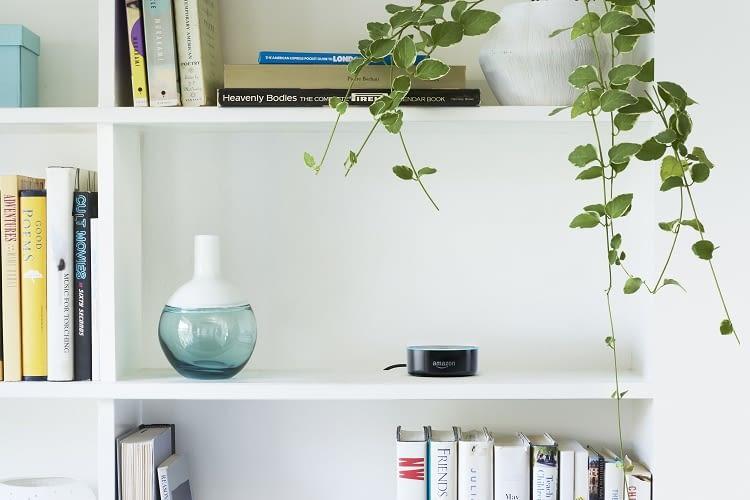 Alexa Skills funktionieren auch über den Echo Dot