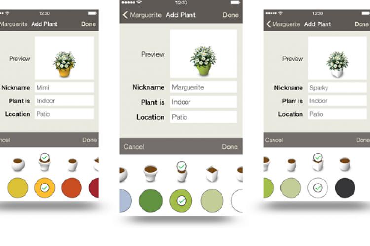 Bild der Koubachi App auf dem Smartphone