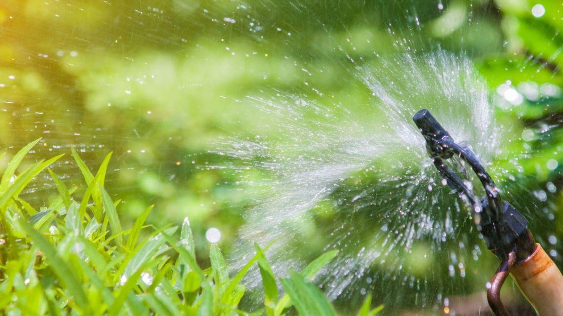 GreenIQ Bewässerung stündlich