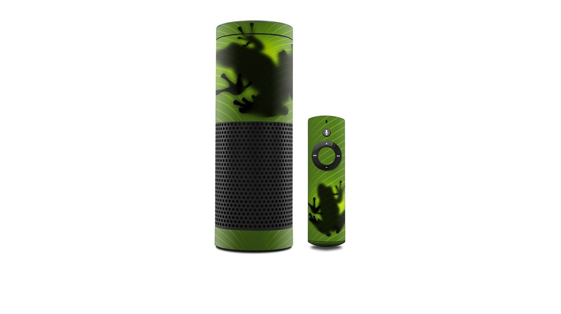amazon-echo-skin-frog-frosch
