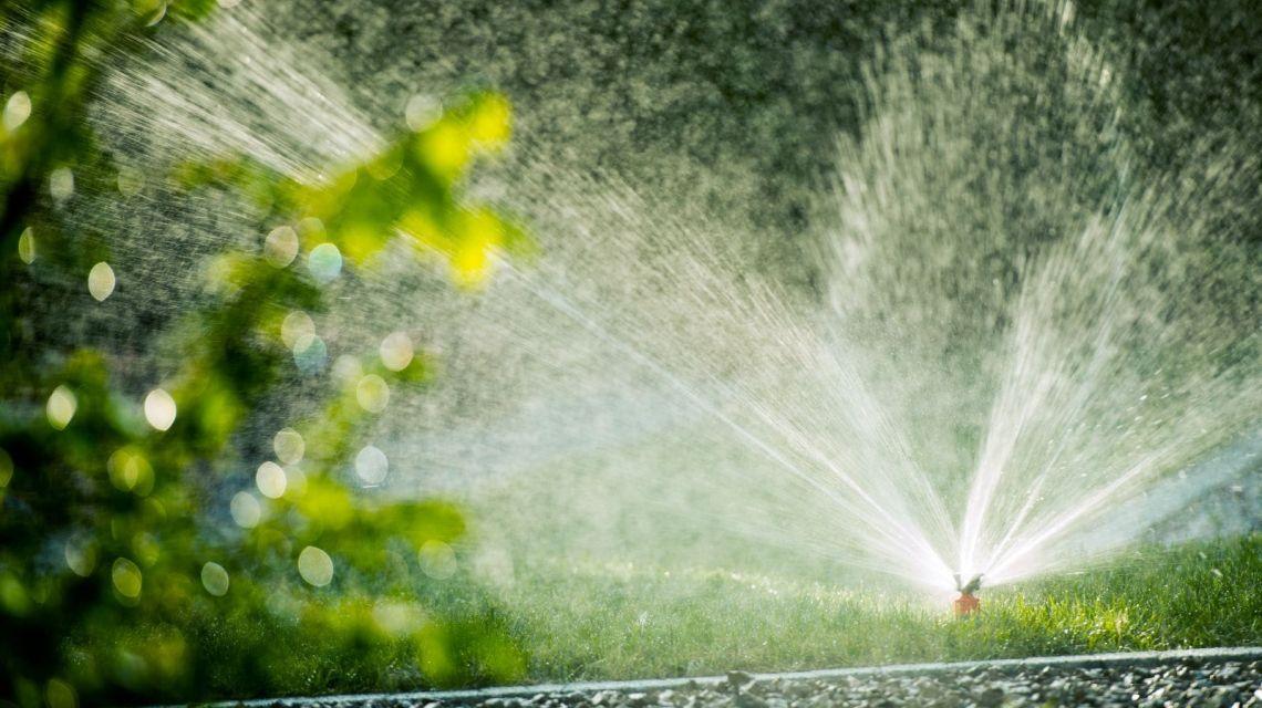GreenIQ Nest Proetct Rauch Bewässerung