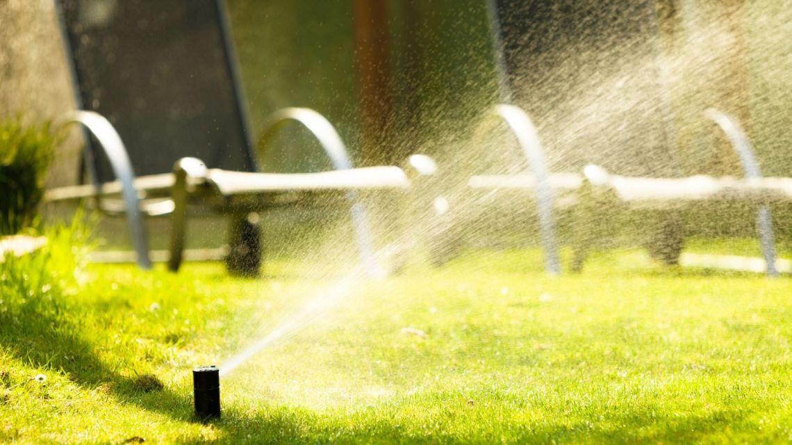Bewässere meine Pflanzen automatisch wenn es nötig ist