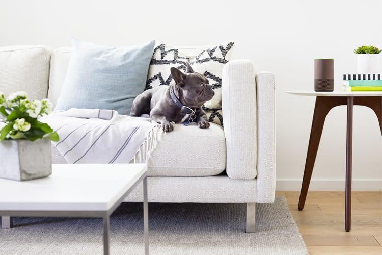 so l sst sich der fernseher ber alexa steuern ratgeber. Black Bedroom Furniture Sets. Home Design Ideas
