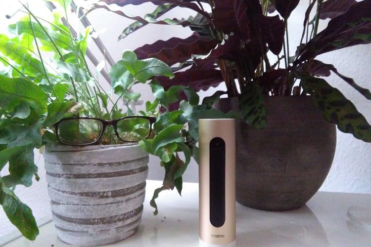 Netatmo Welcome im home&smart-Praxistest: Konkurrenz für die Nest Cam