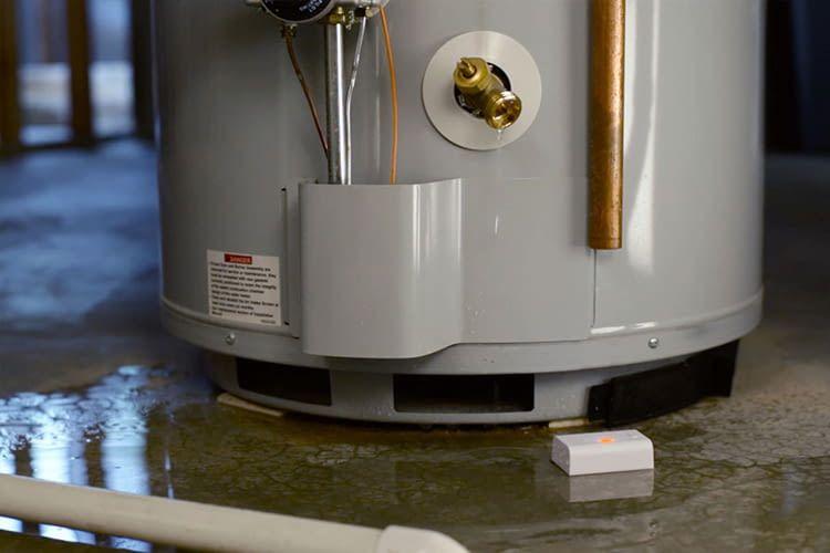 Wassersensoren (hier von Wally) warnen umgehend bei Heizungs- oder Waschmaschinen-Lecks per App