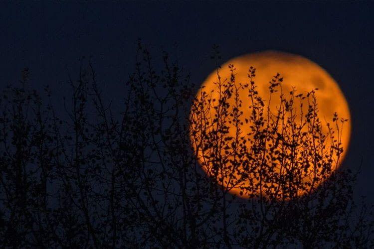 Hexenzirkel oder Halloween-Party: Philips Hue sorgt für die richtige Lichtstimmung