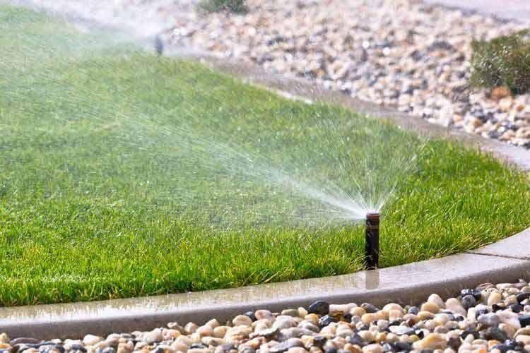 Automatische Bewässerung spart viel Zeit
