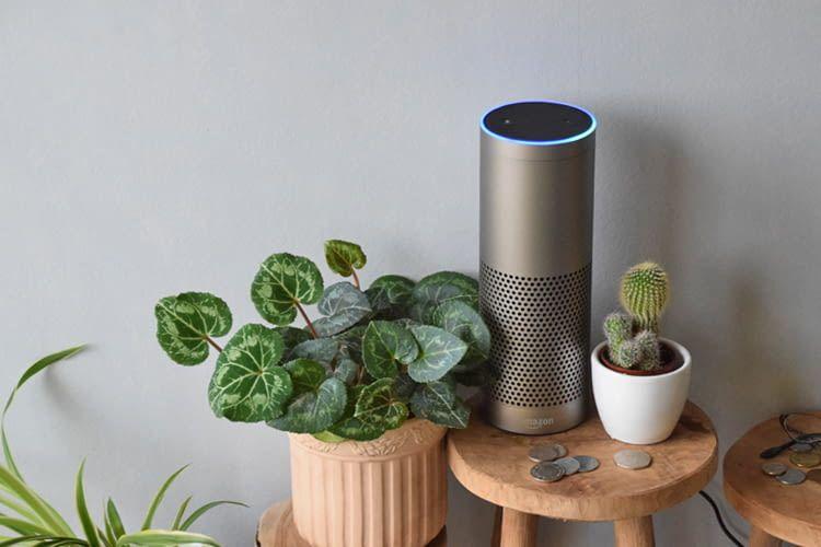 Wer mehr will, als nur ein paar Zimmerpflanzen, kann über Alexa auf sein MyAcker-Projekt zugreifen