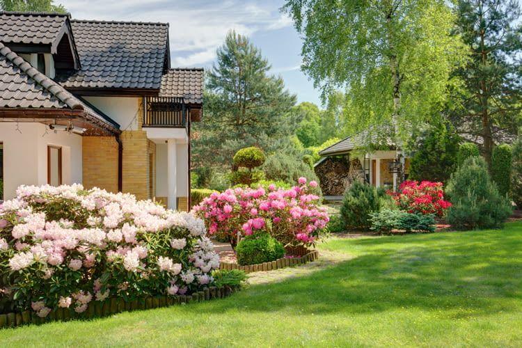 Smarte Helfer übernehmen fast alle lästigen Gartenpflegemaßnahmen
