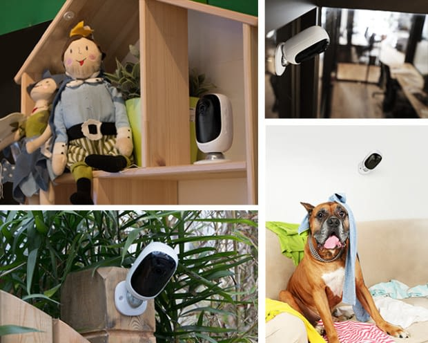Alle Bewohner, Familienmitglieder, Haustiere, Lieferboten und Einbrecher immer im Blick mit der Argus