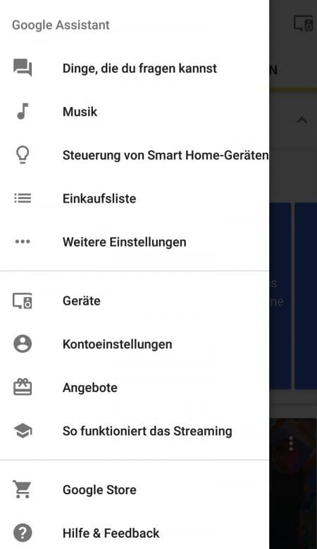 Die Einstellungen der Google Home App