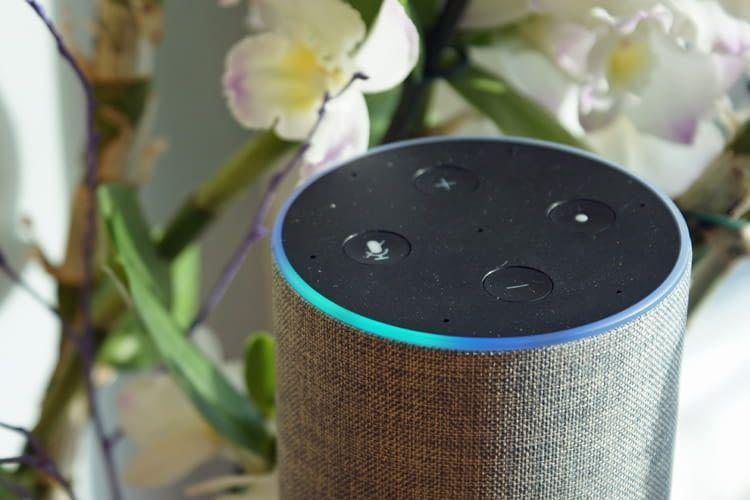 Die Redaktion nutzt verschiedene Echo-Lautsprecher mit unterschiedlichen Namen