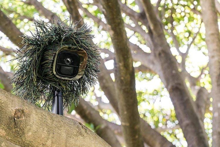 Dank spezieller Schutzhülle ist die Kamera im Freien kaum auszumachen