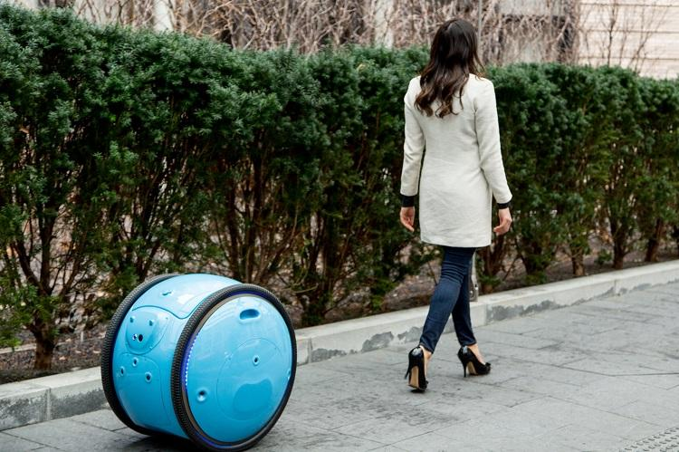Cargobot Gita trackt Personen oder Haustiere