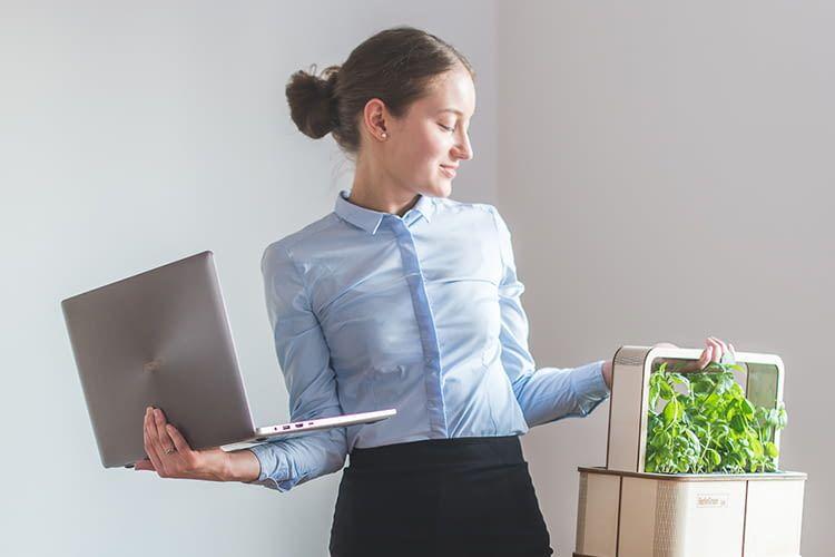 Die GreenBox lässt sich ganz einfach ins Smart Home integrieren