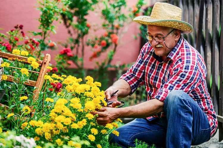 Besonders Senioren profitieren davon, keine schweren Gießkannen mehr schleppen zu müssen