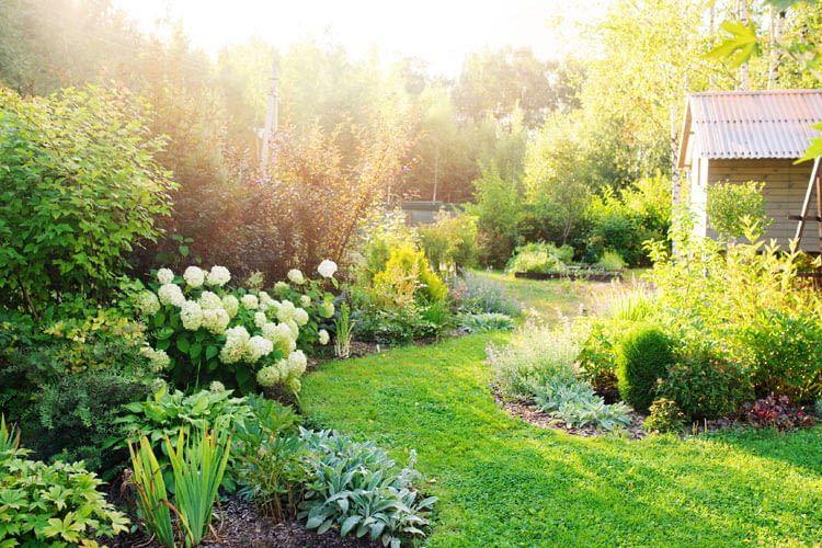 Auf Wunsch kümmern sich Sprachassistenten sogar um die Gartenpflege