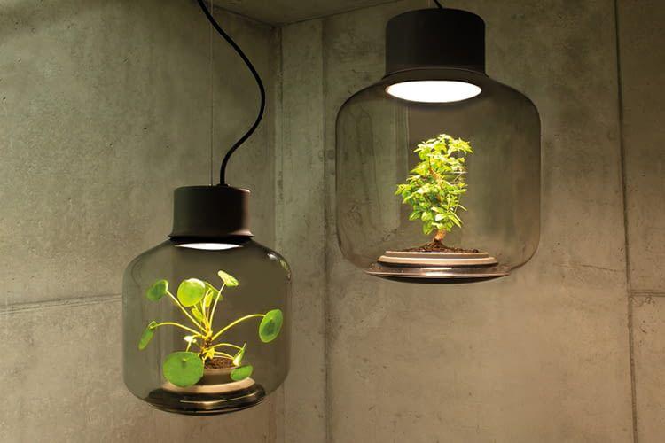 Die Mygdal Plantlights hellen fensterlose Räume auf