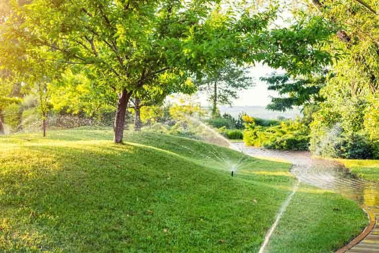 Auch große Flächen lassen sich bei Bedarf automatisch mit genügend Wasser versorgen