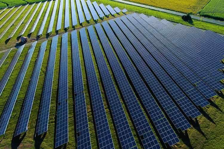 Die NU-Modelle sind vielseitig einsetzbar, zum Beispiel für Photovoltaik Plantagen