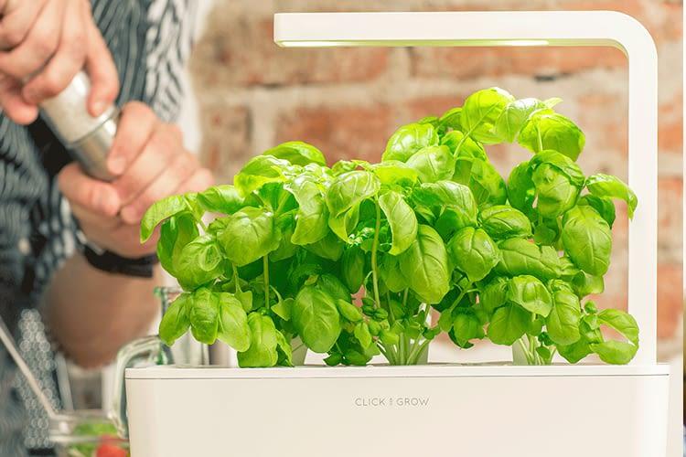 Click & Grow Smart Herb Garden 3 mit flexibler LED-Beleuchtung