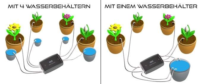Smart Gardener - ein flexibles System: bis zu acht Pflanzen können über vier Programme mit Wasser versorgt werden