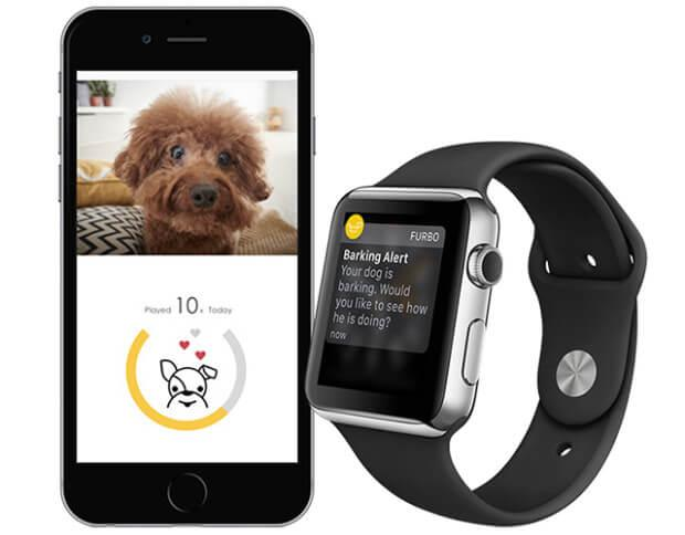 Furbo Dog Camera App für Smartphone und Applewatch