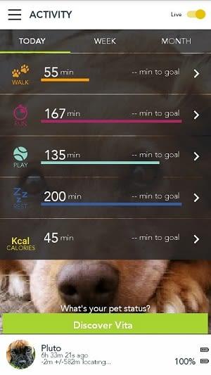 In der Kippy-App festlegen, welche Bewegungsziele erreicht werden sollen