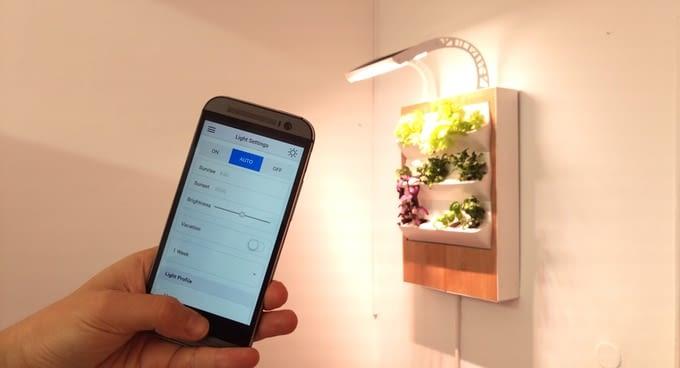 Die Intensität der LED-Lichtbestrahlung lässt sich über die Herbert-App regeln