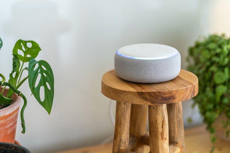 Auch Echo Dot Lautsprecher lassen sich zu einer Multiroom Gruppe koppeln
