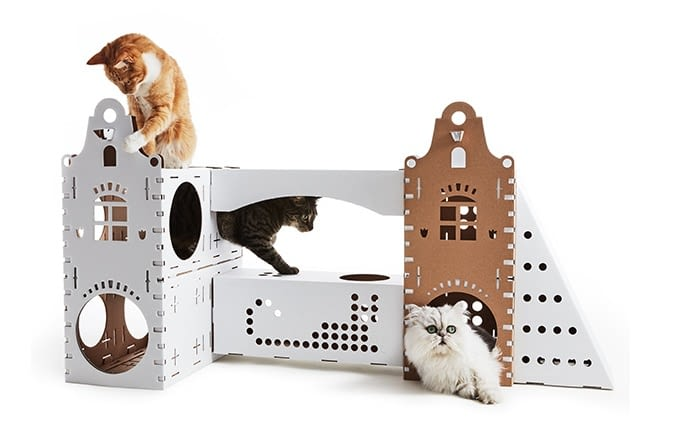 Smarte Katzen lassen sich ihr Eigenheim individuell anfertigen